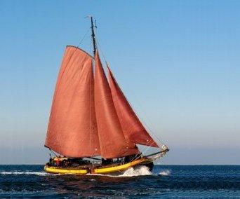 Aussenansicht vom Gruppenhaus 03103173 Segelschiff Vertrouwen in Niederlande NL-8861 HARLINGEN für Gruppenfreizeiten