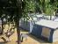 3. Aussenansicht ZEBU-Dorf Platja d Aro /Costa Brava