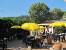 1. Gelände ZEBU-DORF Spanien/Costa Brava