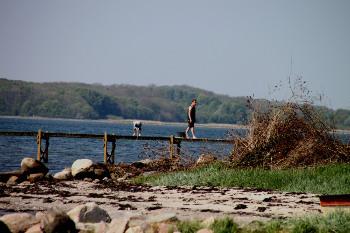 Bilder von Bademöglichkeiten vom Ferienhaus für Gruppen 03453145 Gruppenhaus SANDBJERG in Dänemark 8350 Hundslund für Jugendfreizeiten