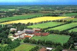 Nächste Bademöglichkeit vom Gruppenhaus 03453460 BJERGET EFTERSKOLE in Dänemark 7741 Froestrup für Kinderfreizeiten