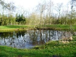 Nächste Bademöglichkeit vom Gruppenhaus 03453677 Gruppenhaus VISBY FRITIDSCENTER in Dänemark DK-6261 BREDEBRO für Kinderfreizeiten