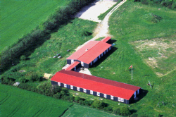Weitere Aussenansicht vom Gruppenhaus 03453811 Gruppenhaus OLDEMARK in D�nemark DK-5970 AEROESKOEBING f�r Gruppenreisen
