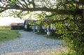 Aussenansicht vom Gruppenhaus 03453823 KLK-Gruppenhaus - ALHAGE in Dänemark 8400 Ebeltoft für Gruppenfreizeiten