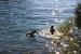 1. Wasser ZEBU<sup>®</sup>-Dorf Mali Losinj - X - Kroatien