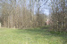 1. Spielwiese Buizerd