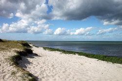Nächste Bademöglichkeit vom Gruppenhaus 03453804 Noerrevang in Dänemark 4581 Roervig für Kinderfreizeiten