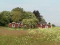 Aussenansicht vom Gruppenhaus 03453829 KLK-Gruppenhaus - Skovbyholm in Dänemark 4840 Nr. Alslev für Gruppenfreizeiten