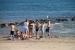 2. Aufmacher ZEBU<sup>®</sup>-KOMBI: Ardèche & Mittelmeer - L -