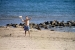 3. Aufmacher ZEBU<sup>®</sup>-KOMBI: Ardèche & Mittelmeer - L -