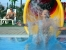 8. Wasser ZEBU<sup>®</sup>-Dorf Rosolina Mare-Venedig -XXL-
