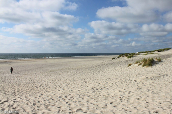 Bilder von Bademöglichkeiten vom Ferienhaus für Gruppen 03453856 Hus Henne in Dänemark 6854 Henne für Jugendfreizeiten