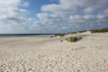 Bilder von Bademöglichkeiten vom Ferienhaus für Gruppen 03453857 Hus Fidde in Dänemark 6854 Henne für Jugendfreizeiten